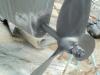 New Cutlass Bearing